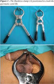 castration.jpeg
