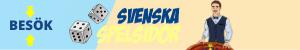 svenskaspelsidor.net
